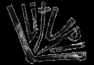 LitUp_Logo_1_web